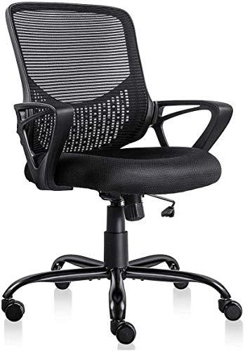 Smugdesk Ergonomic Office Lumbar Support Chair
