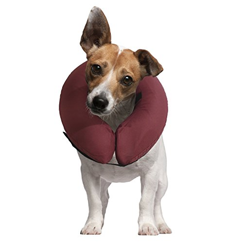 iCollr - Das aufblasbare Halsband für Katzen und Hunde für die postoperative Genesung - MEDIUM
