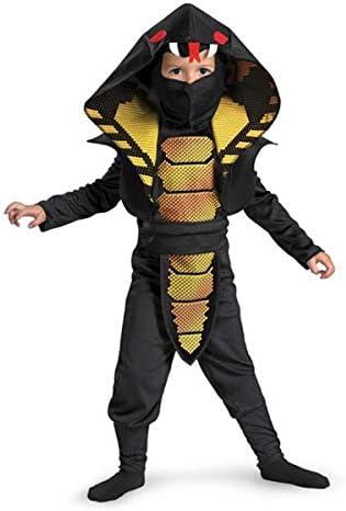 Lizard costume boy _image0