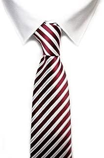 Amazon.es: VIZENZO - Corbatas / Corbatas, fajines y pañuelos de ...
