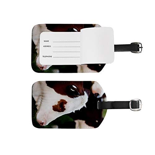 Etiquetas de equipaje, soporte para nombre de dirección, 2 unidades, juego de etiquetas de identificación portátil, bolsa de tarjetas, decoración de equipo de viaje, lindas vacas para maletas bolsas