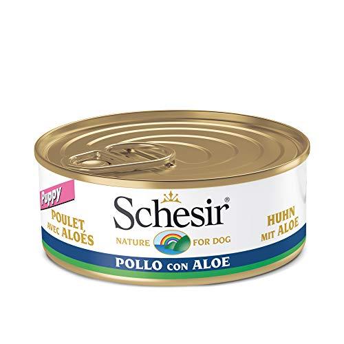 Schesir Dog Puppy Hühnerfilet mit Aloe Vera , Hundefutter nass für Welpen in Gelee, 18 Dosen x 150 g