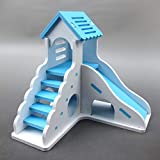 Alfie Pet - Ganya Hideout Toy for Mouse, Chinchilla, Rat, Gerbil and Dwarf Hamster - Color: Blue