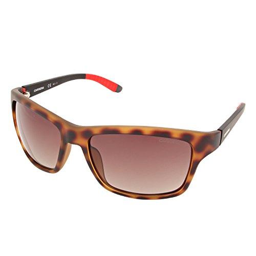 Carrera 8013/S LA 6XV Gafas de sol, Negro (HVNA MTBLACK/BROWN SF PZ), 58 Unisex-Adulto