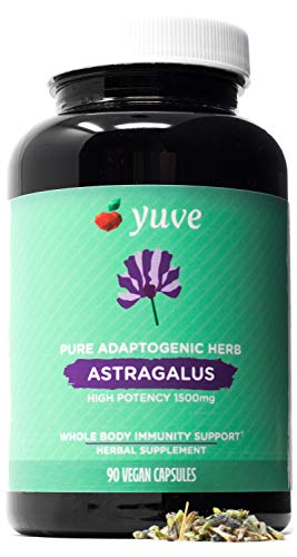 Yuve Astragalus Root 1500 mg Supplement - Whole Body Immune Support - Great for Cardiovascular Health, Anti-Aging & Stress Relief - Powerful Antioxidant - Vegan, Natural, Gelatin-Free - 90 Capsules
