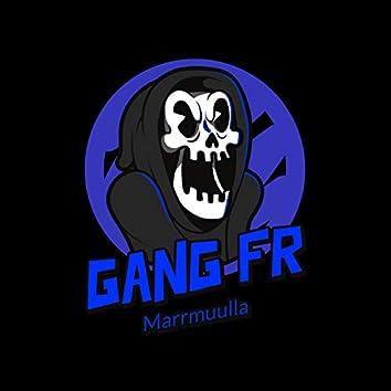 Gang Fr (feat. Marrmuulla)