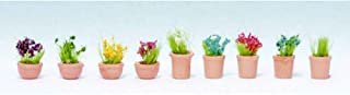 Noch 14084 Ornamental Plants #6 9/ N Scale  Model Kit