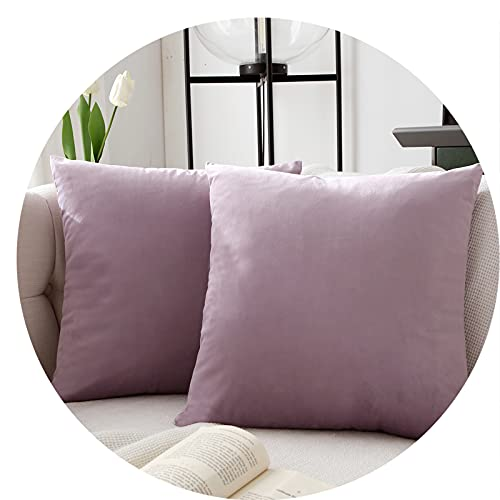 JLCROTENGRA Decorative Throw Pillow Covers,Velvet Cushion Covers for Couch Sofa Bedroom Accent Velvet Pillow Cases Set of 2 20x20 Lavender No Inserts