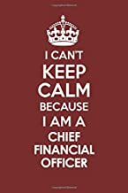 I CAN'T KEEP CALM BECAUSE I AM A CHIEF FINANCIAL OFFICER: Motivational Career quote blank lined Notebook Journal 6x9 matte finish