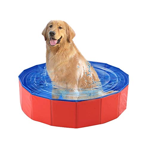 WJH Productos for Mascotas Bañera de Piscina Grande Plegable for Perros y...