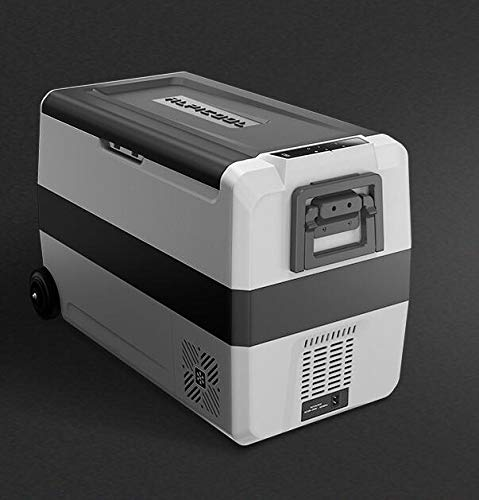 GNLIAN HUAHUA refrigerador 60L 12V 24V Coche portátil Refrigerador Camping al Aire Libre Refrigerador Refrigerador Hogar Oficina Capacidad Grande Refrigerador (Color Name : 60L)