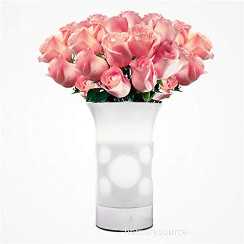 JINGRU Smart Touch EIN/Aus-Schalter Tragbare LED Hochwertiges Geschenk wasserdichte Vasenleuchte für nasse und trockene Blumen, Zwei Netzteile