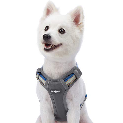 Blueberry Pet 9 Colors Soft & Comfy 3M Reflective Multi-Colored Stripe Mesh Padded No Pull Dog Harness Vest with Back Leash Clips, Medium, Ginger & Blue