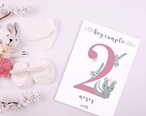 Láminas impresas CUMPLE MES | Lámina para celebrar el cumple mes | Recuerdo de crecimiento | Bebe recién nacido | Ahora también en Catalán | AHORA OPCIONAL bolsa de tela