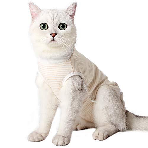 Tuta Professionale per Gatto, per Recupero Chirurgico, per ferite Addominali, Bende coniche e collari elettronici alternativi per Gatti Dopo l'intervento Chirurgico (Arancione,m)