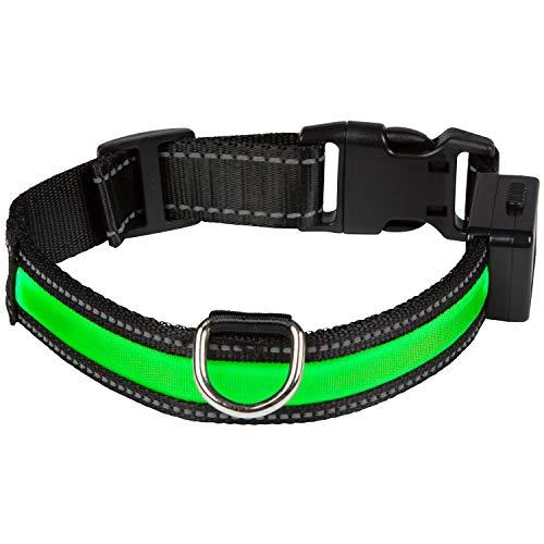 Eyenimal Hundehalsband mit USB-Licht, Collar - Medium, grün
