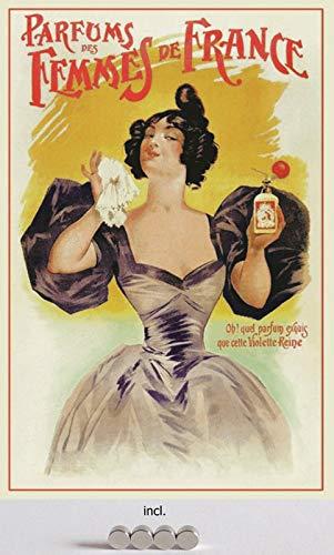 Metalen bord 20 x 30 cm gebogen, incl. 4 magneten reclame affiche parfum van Femmes de France metaal decoratief geschenk bord