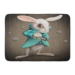 Emvency Doormats Bath Rugs Outdoor/Indoor Door Mat Wonderland White Elegance Rabbit Indicates The Clock Story Fantastic Bathroom Decor Rug Bath Mat 16 x 24
