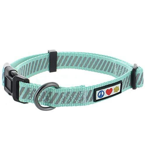 Pawtitas Collar Trafico para mascostas Collar de Entrenamiento Collar Reflectante Extra pequeño Collar de Perro Turquesa Collar de Perro