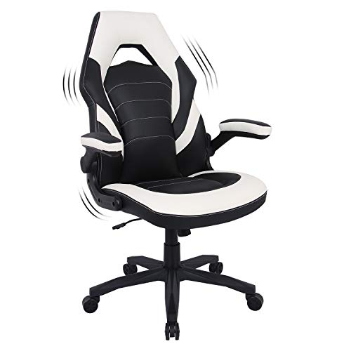 Generic Gaming Chair Racing Style Chair Flip up Arms Adjustable Task Swivel Executive Computer Chair Headrest and Lumbar Support (White)