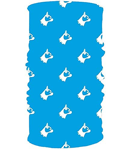 Headband Headband Blue Dogs Headwear Sport Sweatband Yoga Head Wrap For Men Women