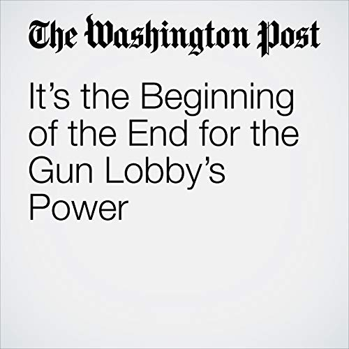 It's the Beginning of the End for the Gun Lobby's Power audiobook cover art