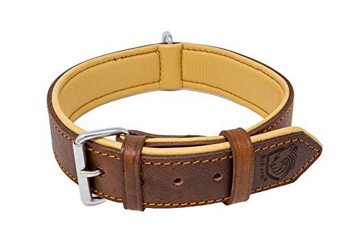 Riparo Collar de perro acolchado de cuero genuino Collar de mascota ajustable K-9 fuerte (L: 3,8cm de ancho para cuello de 45,7cm - 53,3cm, Marrón)
