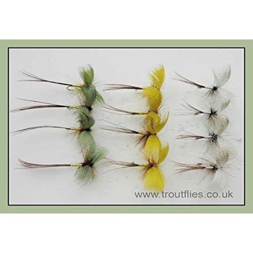 Green Mayfly Trout Flies Size 12 x 3