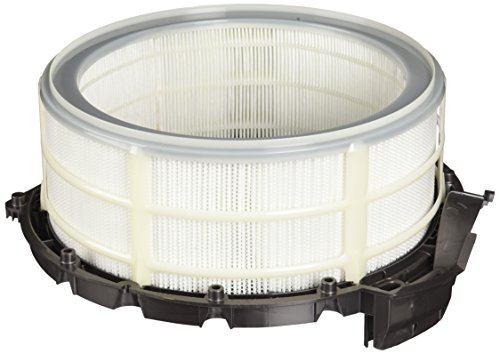 Dyson Filter, HEPA Auspuff DC39