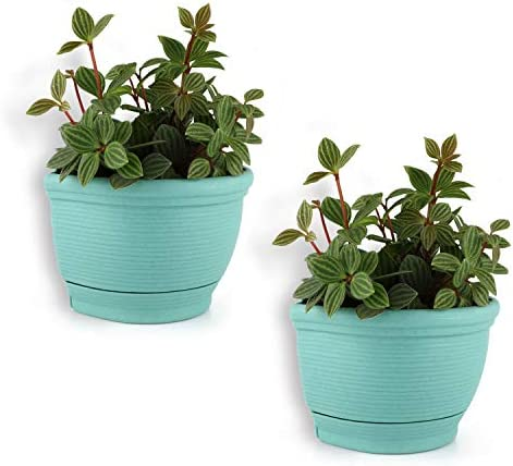 T4U Wall Planter Pots Outdoor Use Plastic 6 Inch Green Set of 2 Small Self Watering Wall Mounted product image