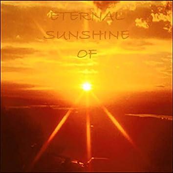 Eternal Sunshine Of