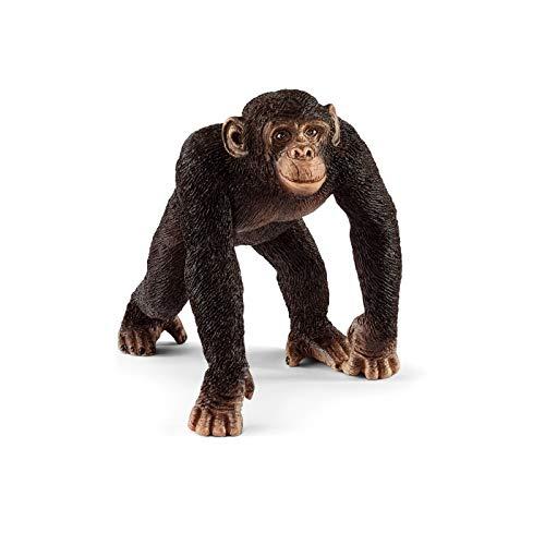 Schleich- Figura chimpancé macho, 5,7 cm