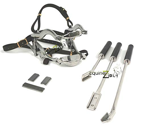 Equine Dental Kit 4000 Series Speculum and 3 Floats with Blades.