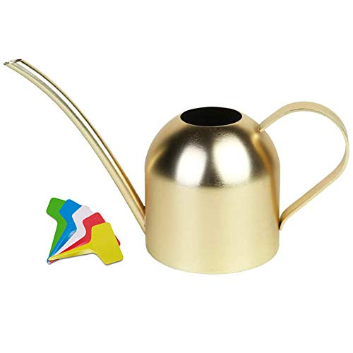 Liyahog Watering Can Indoor Outdoor Small for Kids House Plants and Garden (15oz - Gold)
