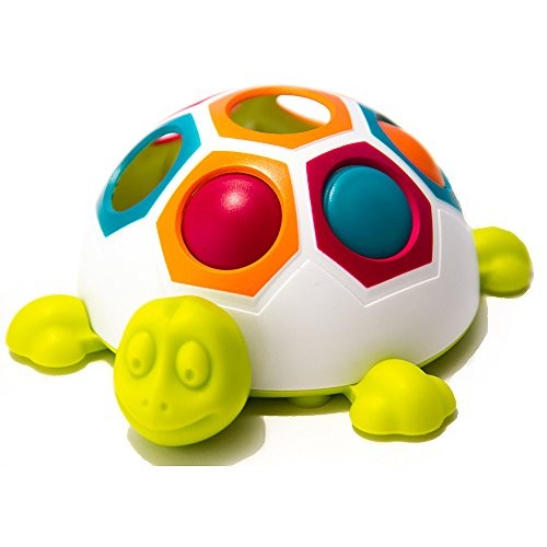 Product Image of the Fat Brain Toys Pop & Slide Shelly