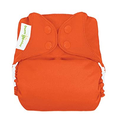 bumGenius Freetime All-In-One One-Size Snap Closure Cloth Diaper (Sassy)