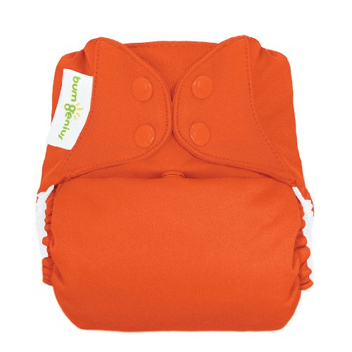 bumGenius Freetime All-In-One One-Size Snap Closure Cloth Diaper (Albert)