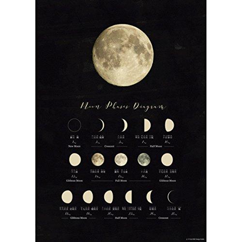 おしゃれ な 月の満ち欠けポスター A3 インテリア・知育・学習 [並行輸入品]