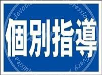 「個別指導(紺)」 金属板ブリキ看板警告サイン注意サイン表示パネル情報サイン金属安全サイン