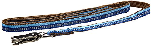 Coastal Pet Products DCP36406SAP K9 Explorer 5/8-Inch Leash for Dogs, 6-Feet, Blue