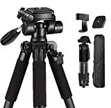 VICTIV 65 inch Travel Tripod for Camera, Compact Tripod 8.8 lbs Load Capacity Aluminum Lightweight and...