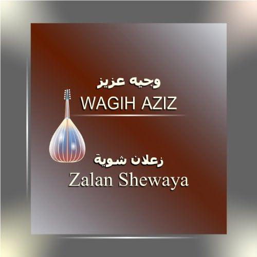 Wagih Aziz