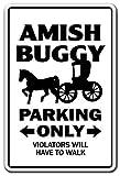 Amish Buggy Parcheggio Carrozza religiosa Mennonite Chiesa 20,3 x 30,5 cm
