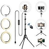 Aro de Luz con 2 Trípode, 12'/30.5CM Anillo de Luz LED de Escritorio, Regulable Ring Light Trabaje con Teléfono y una Cámara DSLR para Fotografía, Selfie, Maquillaje, TIK Tok, Youtube y Vídeo