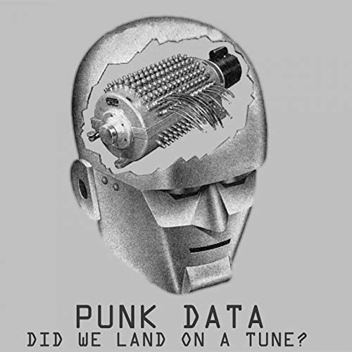 Punk Data