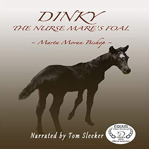 Dinky audiobook cover art