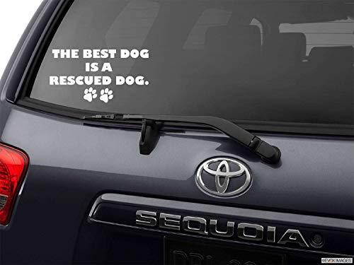 Dkisee Aufkleber, Hunde-Rettungsaufkleber, Hunde-Aufkleber, Adopt Don't Shop, Pet Rescue Aufkleber, Rettungshund-Aufkleber, Rettungs-Aufkleber