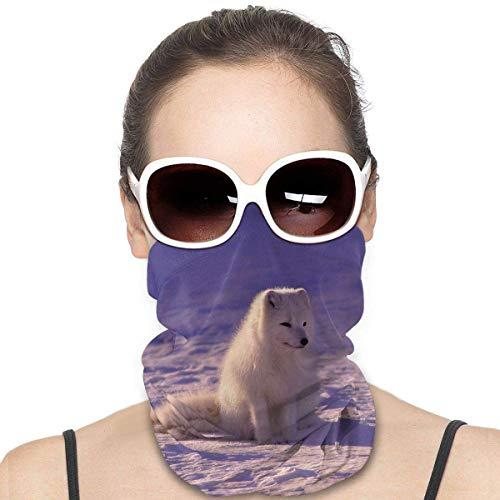 N/W Arctic Fox im Schnee Wurfkissen Variety Kopftuch Outdoor Sports Sonnenfest Staub Bandanas Schal Hals Gesichtsmaske für Herren Damen Schal