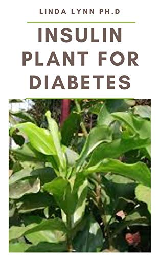 INSULIN PLANT FOR DIABETES: How to use this wonder plant to cure diabetes naturally includes DIY extraction method, dosage and recipes to mange blood sugar and weight loss (English Edition)