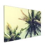 PATINISA Tranquilidad en el paisaje de la naturaleza tropical en verano Painting Cuadro sobre Lienzo Canvas Wall Art para Colgar Impresión de la Lona 45x30cm